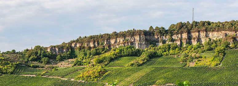 Dolomitfelsen Weingut Frieden in Nittel an der Mosel