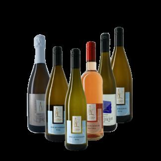 Probierpaket Elbing; Weinprobe beim Winzer in Nittel Mosel, Weingut B. Frieden, versandkostenfrei